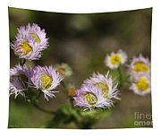 Little Wild Flowers Tapestry