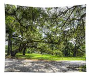 Live Oaks Dripping With Spanish Moss Tapestry