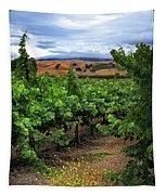 Livermore Vineyard 1 Tapestry