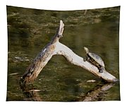 Log Climbing Turtle Tapestry