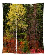 Lone Aspen In Fall Tapestry