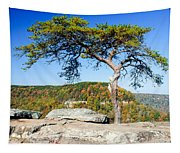 Lonely Lonesome Pine Tapestry