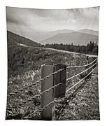 Lonely Mountain Road Tapestry