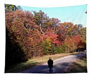 Lonely Road Home Tapestry