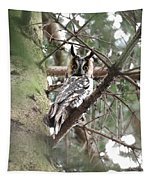 Long Eared Owl At Attention Tapestry