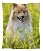 Long Haired Mixed Breed Tapestry
