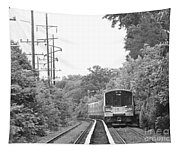 Long Island Railroad Pulling Into Station Tapestry