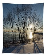 Long Shadows In The Snow Tapestry