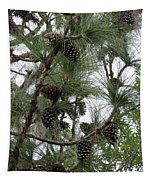 Longleaf Pine Cones Tapestry
