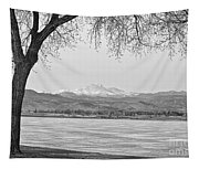 Longs Peak Winter View In Black And White Tapestry