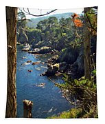Looking Through The Trees At Point Lobos Tapestry
