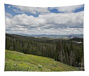 Looking To The Canyon - Yellowstone Tapestry