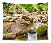 Looking Upstream The Colorado St Vrain River Tapestry