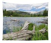 Lost Lake Colorado II Tapestry