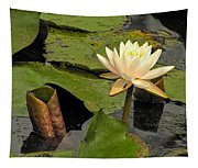 Lotus Flower In White Tapestry