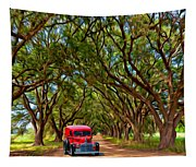 Louisiana Dream Drive  Tapestry