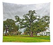 Louisiana Winter 2 Tapestry