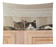 Love Cats Tapestry