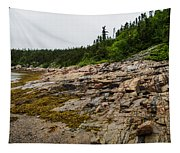 Low Tide - Walking On The Bottom Of Saint Lawrence River Tapestry