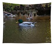 Lowcountry Duck Gathering Tapestry