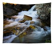 Lower Apikumi Falls Glacier National Park Tapestry