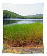 Lower Hadlock Pond Tapestry