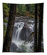 Lower Lewis Falls 3 Tapestry