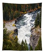 Lower Mesa Tapestry