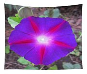 Luminous Morning Glory In Purple Shines On You Tapestry