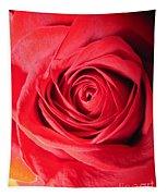 Luminous Red Rose 7 Tapestry