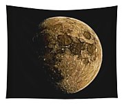 Lunar Drawing  Tapestry