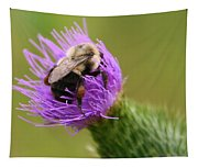 Lunching Atop A Thistle Tapestry