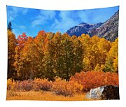 Lundy's Fall Show Tapestry
