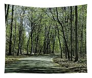 M119 Tunnel Of Trees Michigan Tapestry