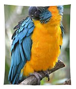 Macaw Profile Tapestry