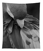 Macaws Of Color B W 16 Tapestry