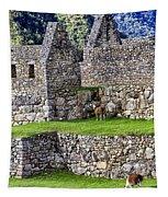 Machu Picchu - Grazing Lamas Tapestry