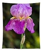 Magenta Iris Crop Tapestry