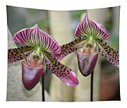 Magenta  Lady Slippers Tapestry