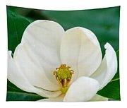 Magnolia Blossom 2 Tapestry