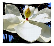 Magnolia Carousel Tapestry