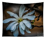 Magnolia Tree Blossum Tapestry