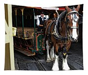 Main Street Horse And Trolley Tapestry
