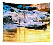 Maine Winter Along The Androscoggin River Tapestry