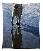 Maisie At The Beach Tapestry