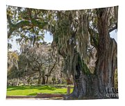 Majestic Live Oak Tree Tapestry