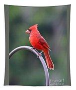Majestic Cardinal Tapestry