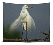 Majestic Great Egret Tapestry