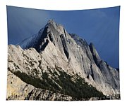Majesty In The Canadian Rockies Tapestry