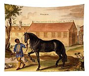 Makomilia, A Turk, Led By A Negro Tapestry